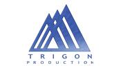 trigon_logo