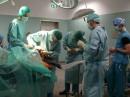 Traumberuf Tierarzt 2