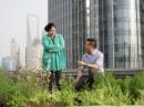Schanghai Rooftop Garden