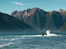 Fiordland_1